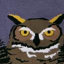 fabric detail of Owl Mountain - Great Horned Owl Barn Owl Nature Crew Socks Green - Men's