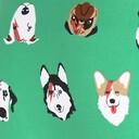 fabric detail of Dogs of Rock - Dog Bikini Underwear Green - Sizes XS-XL